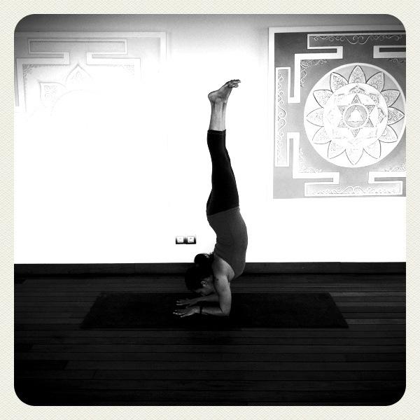 anusara-yoga-alineamiento