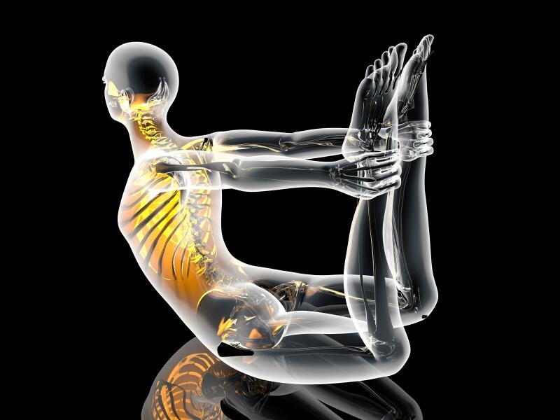 Anatomía del Yoga con Lucas Benet