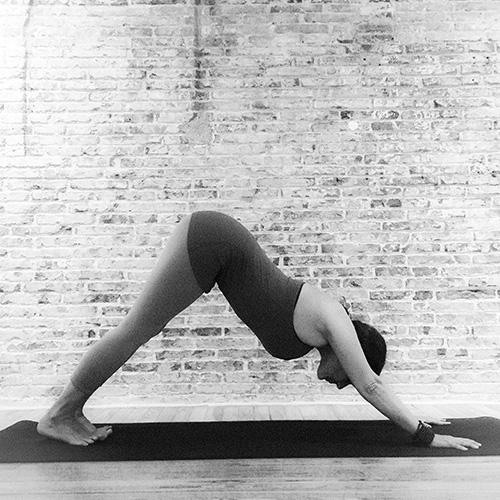 Clases de anusara yoga online y presenciales